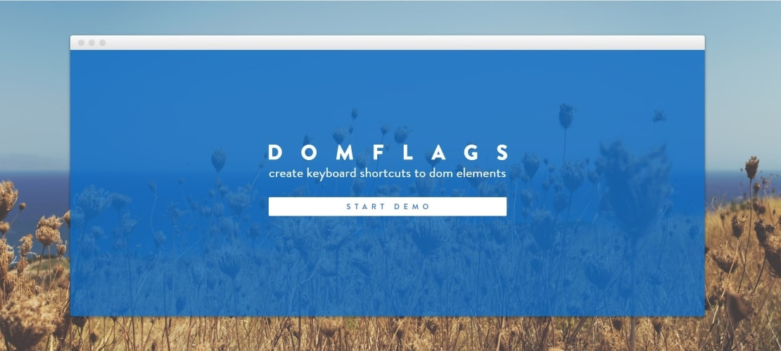 domflags - 30 Best Chrome Extensions for Developers, Designers and Testers